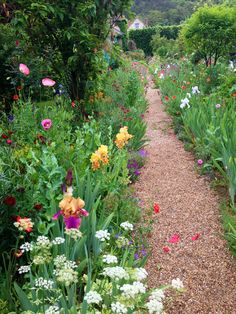 Monet's Garden, Giverny (taken by me)