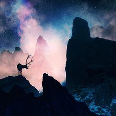 35PHOTO - Caras Ionut - The unrecoverable dreamer