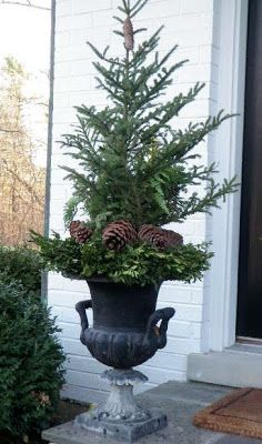 "Winter Containers...... Ok, here is a step up.........boxwood wreath, insert a ""tree topper"" and.........pine cones at the base. DONE!"
