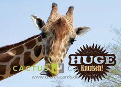 Huge Knutsch!