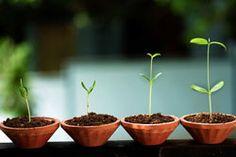 Comment bien investir dans une startup ? >> http://www.en-bourse.fr/comment-bien-investir-dans-une-startup/
