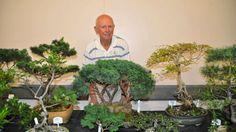 Merimbula NSW, bonsai show