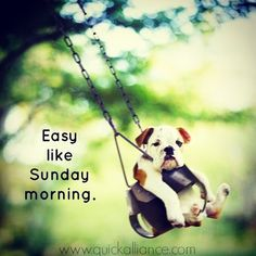 Happy Sunday Quotes Discover Easy like sunday moring Easy like sunday moring sunday sunday quotes happy sunday sunday morning sunday humor sunday quote happy sunday quotes Sunday Morning Memes, Sunday Humor, Happy Sunday Quotes, Enjoy Your Sunday, Easy Like Sunday Morning, Good Morning Funny, Good Morning Quotes, Funny Sunday, Morning Thoughts