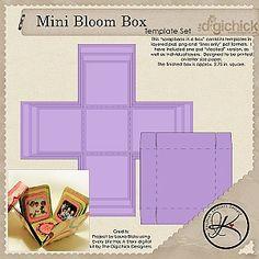 explosion box album