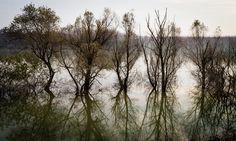 A flood day by Francesco Stingi on 500px