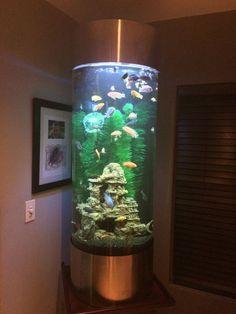 19 idées de décoration d'aquarium élégant Home Aquarium, Aquarium Design, Aquarium Fish Tank, Aquariums Super, Amazing Aquariums, Conception Aquarium, Seahorse Tank, Cool Fish Tanks, Guter Rat