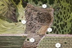 When to Use a Ground Blind