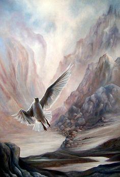 Seagull by Glenda Stevens