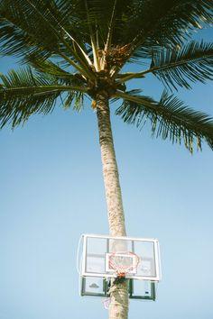 palm tree basketball hoop - my husbands tropical dream! Vive Le Sport, Station Balnéaire, California Dreamin', Summer Of Love, Summer Sport, Summer Jam, Belle Photo, Summer Vibes, Palm Trees