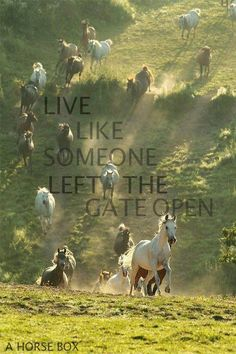 Live like someone left the gate open!