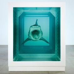 Damien Hirst exhibition at Tate Modern The Physical Impossibility of Death - large poster Land Art, Modern Art, Contemporary Art, Instalation Art, Saatchi Gallery, Damien Hirst, Modern Pictures, Art Plastique, Art History