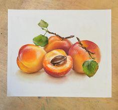 Абрикосы для #artofpastels_reference #пастель#фрукты