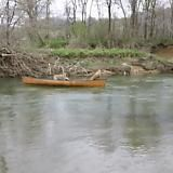 Lab Rescues Stranded Dogs in a Canoe - Imgur