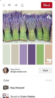 bundled hues (design seeds) bundled hues This site is all about color. Scan through it and find the one color combo you like or do as they did and choose a picture or fabric that is absolutely your favorite thing and match the colors up to that. Colour Pallette, Color Palate, Colour Schemes, Color Combos, Color Palette Green, Lavender Color Scheme, Purple Color Palettes, Paint Schemes, Design Seeds