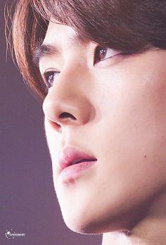 "150822   Sehun ""The EXO'luXion"" Concert in Xi'an Credit: SAEKOBABY"