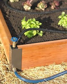Raised Bed with Soaker System - so cool! Adds Self-Watering ease to your existing raised beds ~ Gardening Stuff