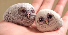 """Akie Nakata paints such realistic creatures on stones that she gives a whole new meaning to the term """"pet rock."""""""
