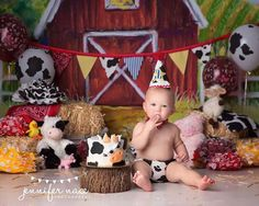 Who needs a barn for a country session? SO cute :) perfect floor to match:: our nebraska or dirt mat floors 1st Birthday Photoshoot, Baby Boy 1st Birthday, Boy Birthday Parties, Birthday Ideas, Farm Animal Birthday, Cowboy Birthday, Farm Birthday, First Birthday Pictures, Barnyard Party