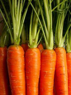 MARCHEWKA Nie tylko świetnie działa na OCZY, ale także i na SKÓRĘ. - Jest źródłem cennych składników odżywczych przede wszystkim beta-karotenu, czyli prowitaminy witaminy A, która neutralizuje wolne rodniki w organizmie. Razem z orzechami, marchew stanowi świetną przekąskę między posiłkami. Nie musimy się martwić o kalorie. Jedna mała marchewka zawiera ich tylko około 27.  regularne spożywanie marchwi przyczynia się do utrzymania naturalnej lekko brzoskwiniowej, promiennej cery.