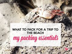 What to Pack For The Beach – Packing Essentials Beach Vacation Packing List, Vacation Deals, Packing List For Travel, Travel Checklist, Packing Tips, Travel Tips, Beach Essentials, Travel Essentials, Cheap Tropical Vacations
