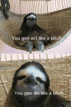 I found the next thing to entertain me - creepy sloth!!