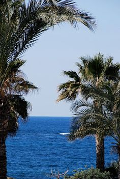 best dating in paphos cyprus