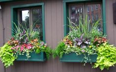 More window boxes.