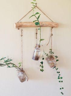 Hanging Wall Vase, Hanging Plants, Indoor Plants, House Plants Decor, Plant Decor, Natural Home Decor, Diy Home Decor, Diy Decoration, Decorations