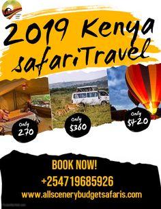 All Scenery Budget Safaris Tanzania, Kenya, The Great Migration, Pink Lake, Tour Operator, East Africa, Bird Species, Uganda, Safari