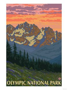 Spring Flowers, Olympic National Park Premium Poster