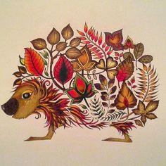 Väritys#parastaterapiaa#mielilepää#johannabasford