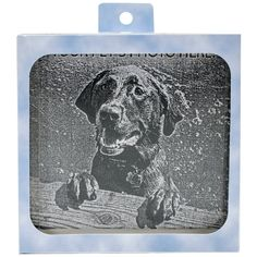 Pet Memory Stones, Memorial Headstone, Small with Customizable Photo Frame ** Check this awesome product by going to the link at the image. (This is an Amazon affiliate link)