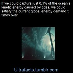 The IEA predicts that by 2050 ocean energy might produce up to 337 GW of power, which will have the potential of reducing C02 emissions by up to 1 billion tonnes. According to the UK Marine Foresight Panel, if we could capture just 0.1% of the total of the ocean's kinetic energy caused by tides, we could satisfy the current global energy demand five times over. Indeed, it's scalable and limitless … as long as the tides keep flowing.