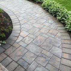 Beautiful Paver Walkway Design Ideas Images - Home Design . Front Walkway Landscaping, Front Yard Walkway, Paver Walkway, Backyard Landscaping, Landscaping Ideas, Walkway Ideas, Stamped Concrete Walkway, Front Yards, Concrete Patio