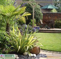 Hertfordshire Garden