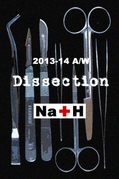"Na+H 2013-2014 A/W collection ""Dissection"""