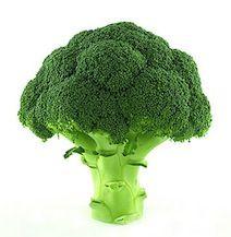 Escolhendo, limpando, cozinhando e congelando o brócolis :: Refoga Caseira