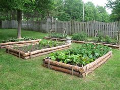 LOVE these raised beds! … - Garden Ideas - LOVE these raised beds! LOVE these raised beds! More The post LOVE these raised beds!