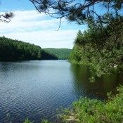 Backpacking the Algonquin Park Eastern Pines Trail is a short easy loop that can be hiked in a weekend, or access it by water for a hike & paddle combo trip Backpacking, Camping, High Falls, Algonquin Park, Topographic Map, Trekking, Ontario, Places Ive Been, Trail