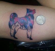 akita inu photo tattoo color pics