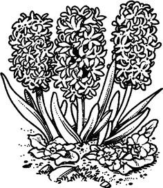 spring_38 spring coloring pages for adults and teenagers