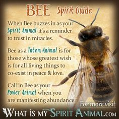 The most in-depth Bee Symbolism & Bee Meanings! Bee as a Spirit, Totem, & Power Animal. Plus, Bee in Celtic & Native American Symbols and Bee Dreams, too! Bee Spirit Animal, Spirit Animal Quiz, Animal Spirit Guides, Animal Meanings, Animal Symbolism, Spiritual Animal, Animal Medicine, Native American Symbols, American Indians