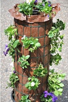 Discover how to make a gorgeous flower tower! See the fully grown tower here! It… Discover how to make a gorgeous flower tower! See the fully grown tower here! It's a really beauty! Water Flowers, Diy Flowers, Flower Pots, Potted Christmas Trees, Flower Tower, Tower Garden, Plant Tower, Self Watering, Geraniums