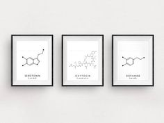 3x Black and White Minimalist Serotonin, Oxytocin and Dopamine Structures Printable Art Set by typelab This listing contains three .jpg downloadable files. Individual versions of this collection can also be found in our shop. Our wide range of digital prints will compliment any modern home.