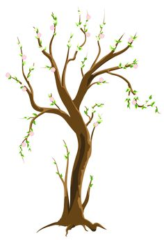 Spring Tree PNG Clipart Picture