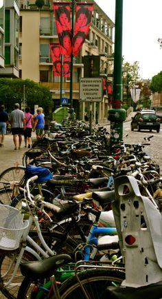 Bikes in Lido ~ Photo by David Feldkamp