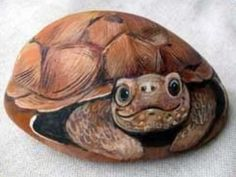 Painting Pebbles Pattern Idea for Painting on Stones and Rocks Animal Stones Animal Shapes animals rocks stones realistic pattern Stein Bemalen Stone Crafts rock crafts DIY kawaii cute critterscreatures The post sharp humor appeared first on Easy Crafts. Turtle Painting, Pebble Painting, Pebble Art, Stone Painting, Painting Flowers, Diy Painting, Painted Rock Animals, Hand Painted Rocks, Painted Pebbles