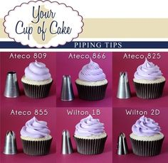 CUPCAKE frosting tips and patterns