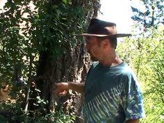Joe Bullock - YouTube