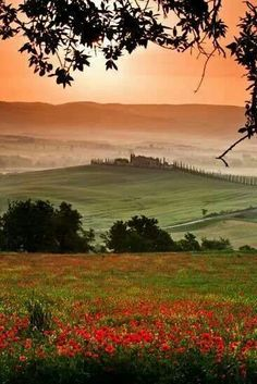 Tuscany with poppies... [One of my favorite memories is seeing hillside after hillside carpeted with red poppies.]
